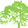 Tree-green copy