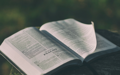 Why Do I Need the Psalms?