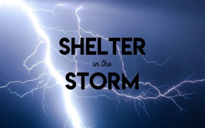 Shelter in the Storm